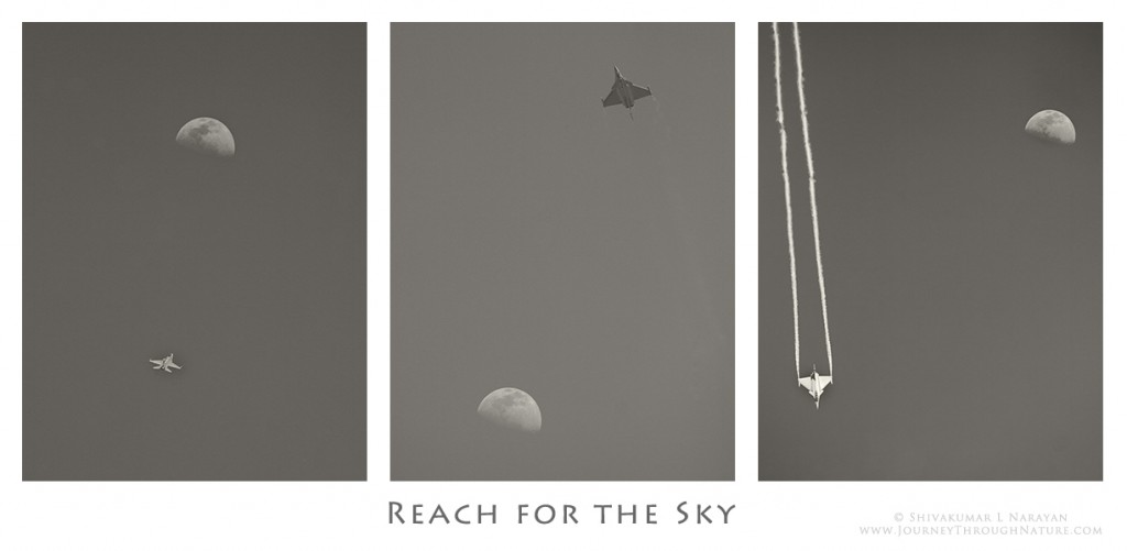 ReachForTheSky