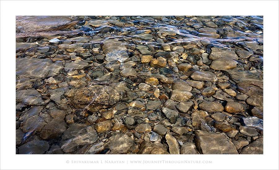 Clear water and rocks, Pangong Lake