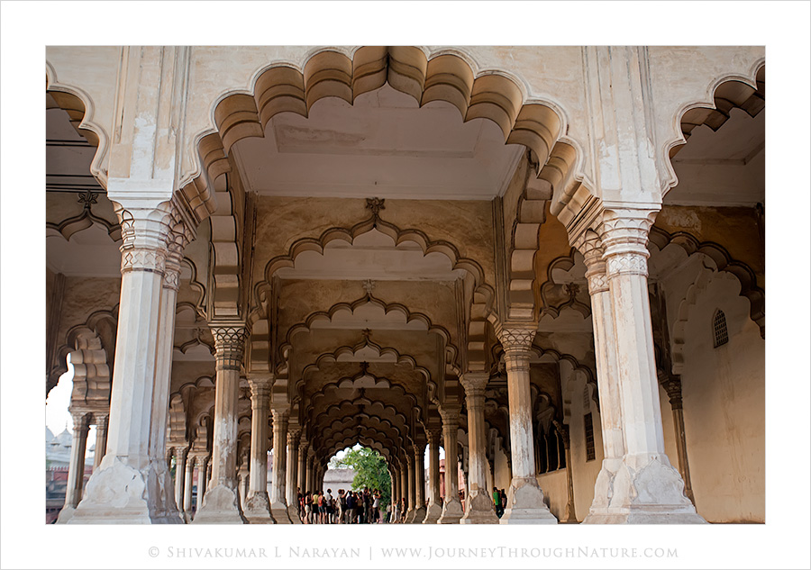 Agra Fort Pillars Front View