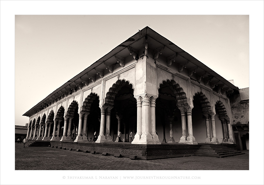 Agra Fort Pillars Side View