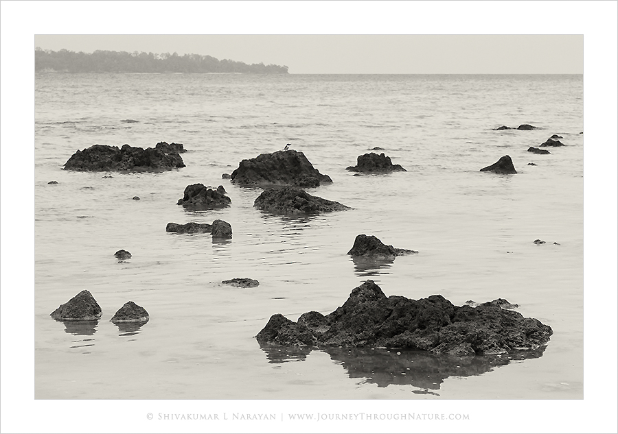 The lonely wait, Dolphin Beach, Havelock, Andaman