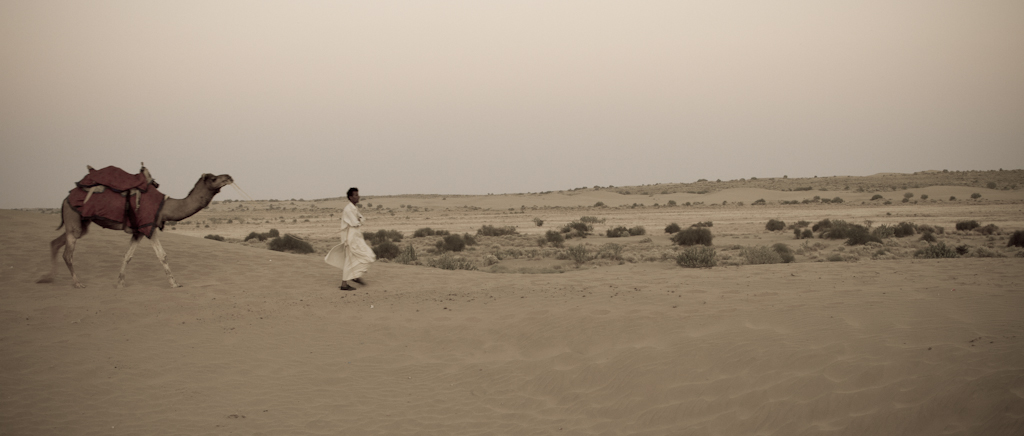 Camel safari, Sam Sand Dunes, Rajasthan