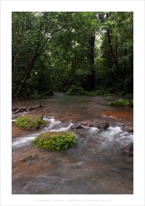 MonsoonStreams_Sirsi