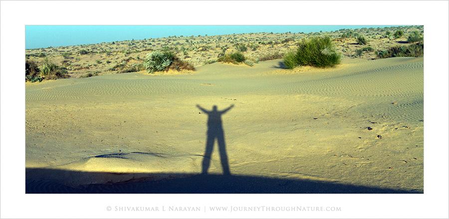 Shadows on top of Sand dunes of Khuri, Rajasthan