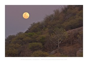 Ramanagara_Supermoon