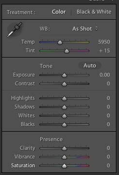 Adobe Lightroom 4 Develop module Basic tab