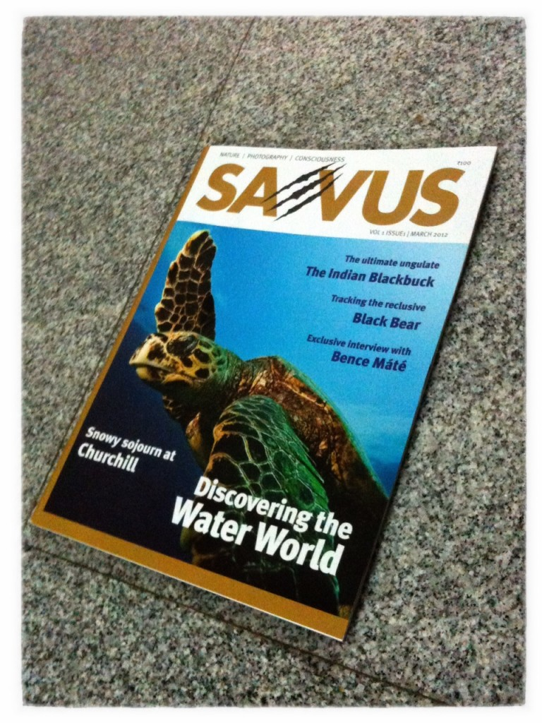 Saevus - Photography & Natural History Magazine