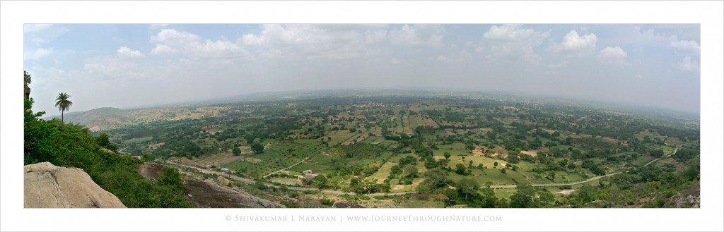Panoramic view of Mandya as seen from Melukote Yoganarasimha temple