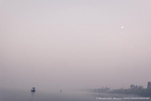 Moon set on a foggy winter morning in Sundarbans