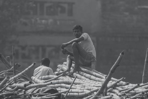 Local villager selling bamboo at Sundarbans