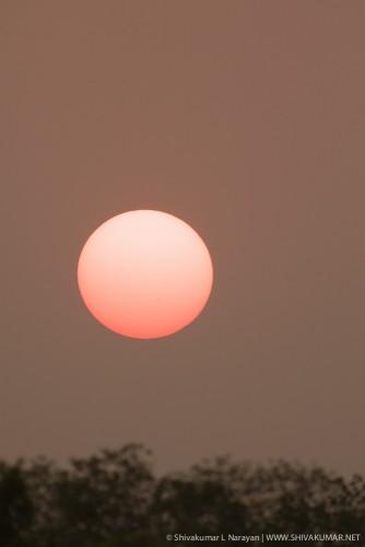 Recording in progress / Sunset at Sundarbans